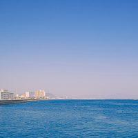 【瀬戸芸】9/28秋会期スタート!島に渡る前に讃岐うどんで腹ごしらえを♪